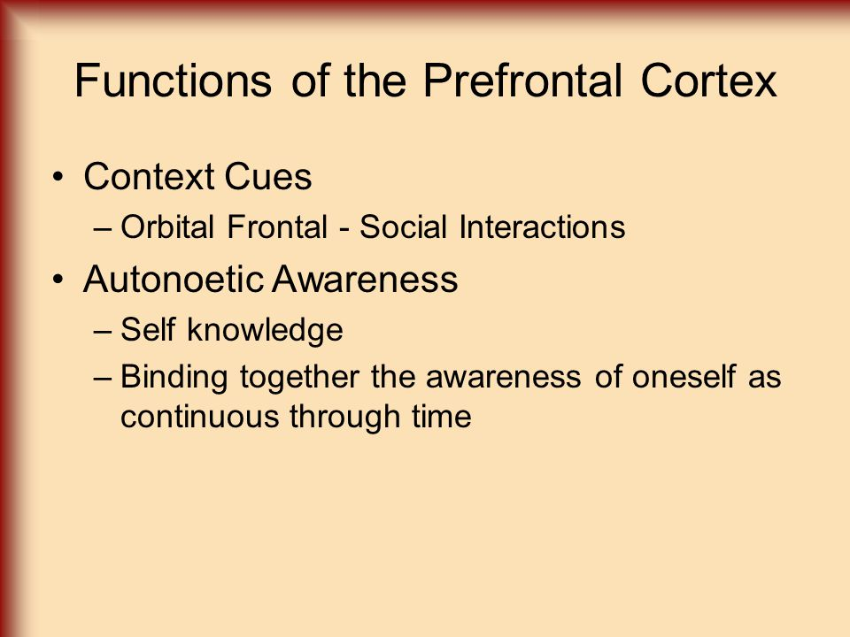 Functions of the Prefrontal Cortex Context Cues –Orbital Frontal - Social Interactions Autonoetic Awareness –Self knowledge –Binding together the awar
