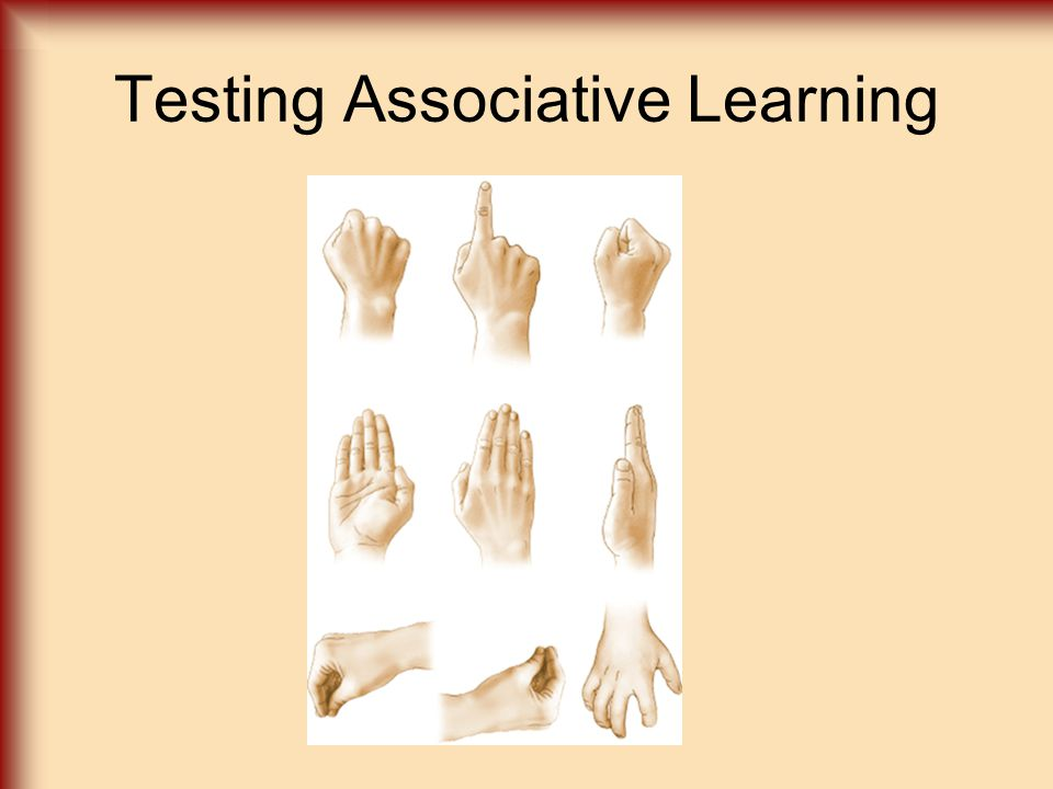 Testing Associative Learning