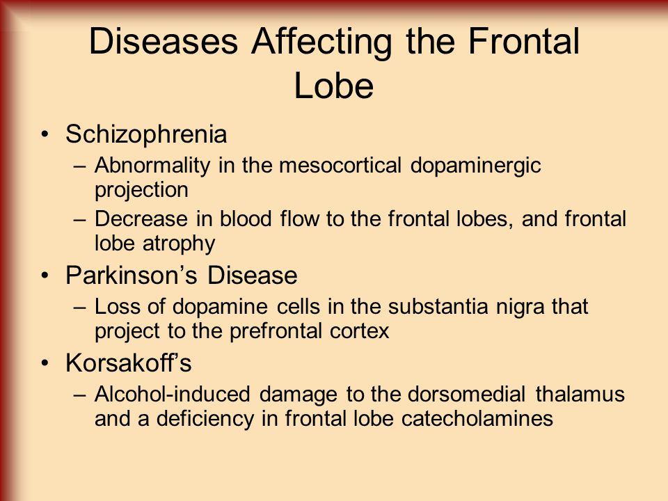 Diseases Affecting the Frontal Lobe Schizophrenia –Abnormality in the mesocortical dopaminergic projection –Decrease in blood flow to the frontal lobe