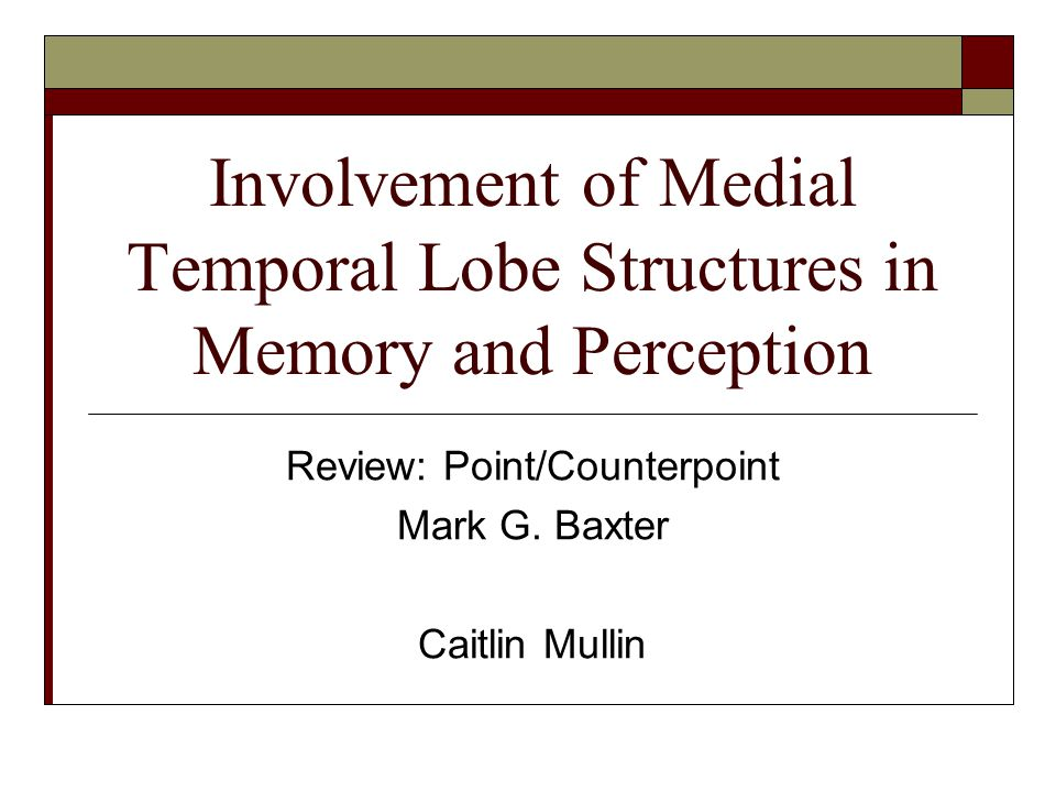 Involvement of Medial Temporal Lobe Structures in Memory and Perception Review: Point/Counterpoint Mark G. Baxter Caitlin Mullin