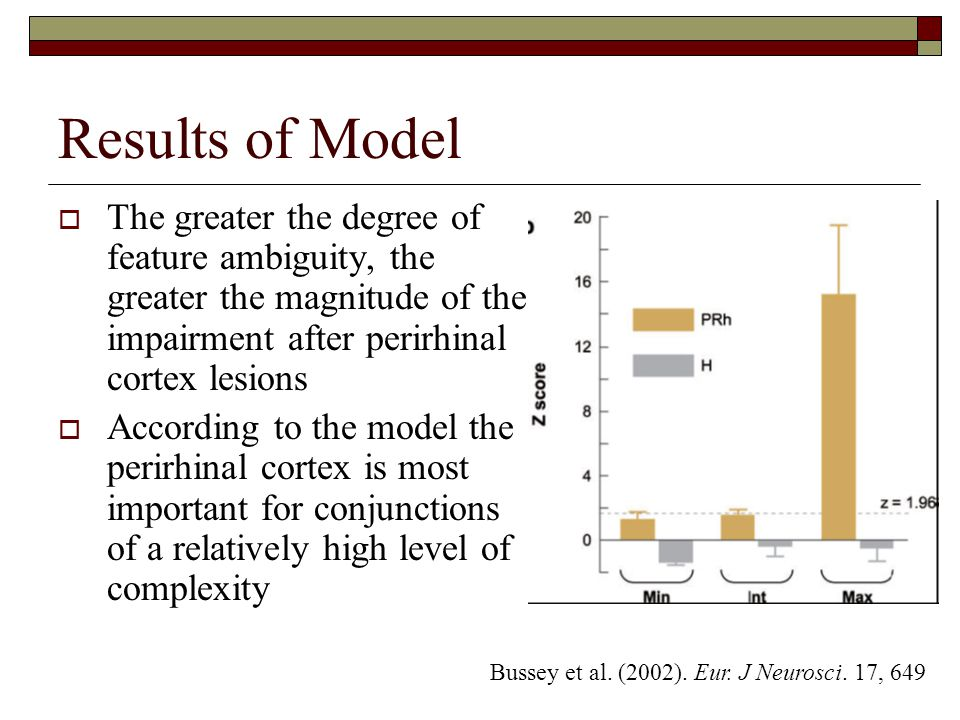 Results of Model  The greater the degree of feature ambiguity, the greater the magnitude of the impairment after perirhinal cortex lesions  According to the model the perirhinal cortex is most important for conjunctions of a relatively high level of complexity Bussey et al.
