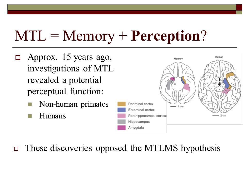 MTL = Memory + Perception.  Approx.