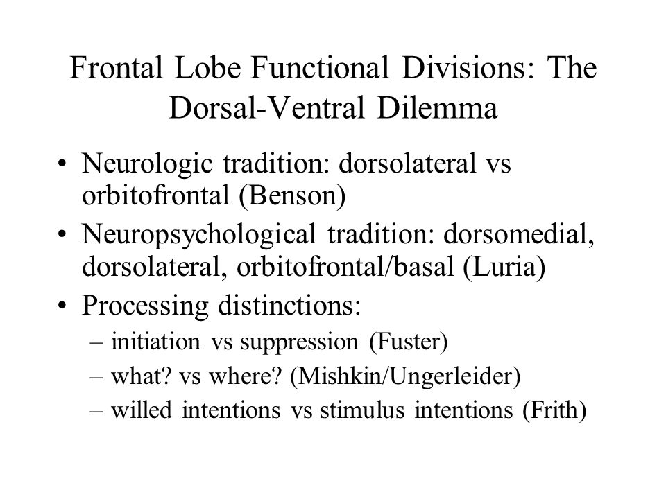 Frontal Lobe Functional Divisions: The Dorsal-Ventral Dilemma Neurologic tradition: dorsolateral vs orbitofrontal (Benson) Neuropsychological tradition: dorsomedial, dorsolateral, orbitofrontal/basal (Luria) Processing distinctions: –initiation vs suppression (Fuster) –what.