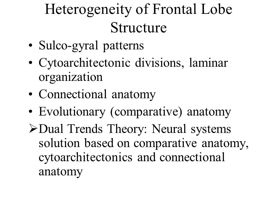 Heterogeneity of Frontal Lobe Structure Sulco-gyral patterns Cytoarchitectonic divisions, laminar organization Connectional anatomy Evolutionary (comparative) anatomy  Dual Trends Theory: Neural systems solution based on comparative anatomy, cytoarchitectonics and connectional anatomy