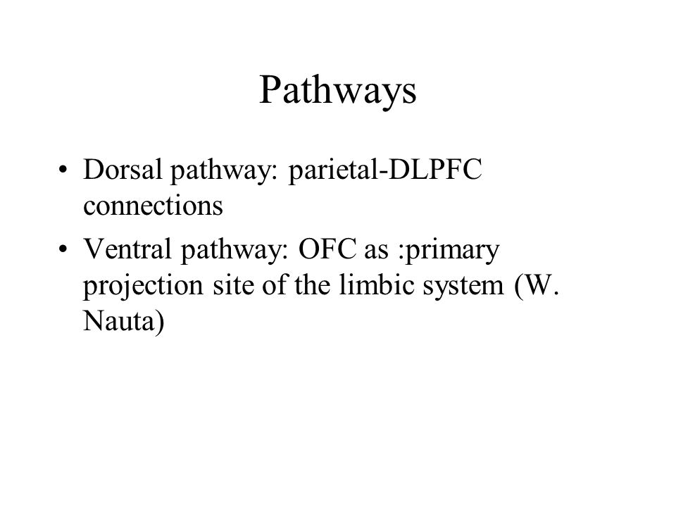 Pathways Dorsal pathway: parietal-DLPFC connections Ventral pathway: OFC as :primary projection site of the limbic system (W.
