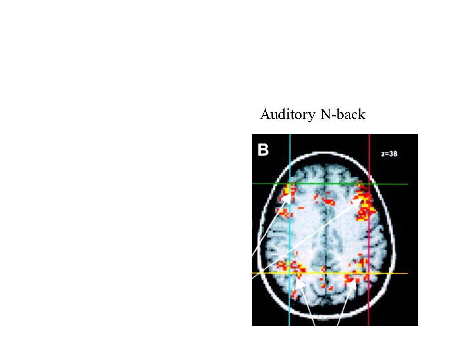 Auditory N-back
