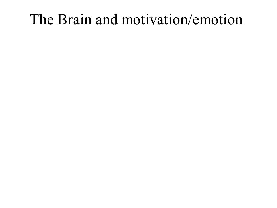 The Brain and motivation/emotion