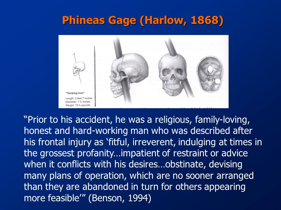 Phineas Gage (Harlow, 1868) Prior to his accident, he was a religious, family-loving, honest and hard-working man who was described after his frontal injury as 'fitful, irreverent, indulging at times in the grossest profanity…impatient of restraint or advice when it conflicts with his desires…obstinate, devising many plans of operation, which are no sooner arranged than they are abandoned in turn for others appearing more feasible' (Benson, 1994)