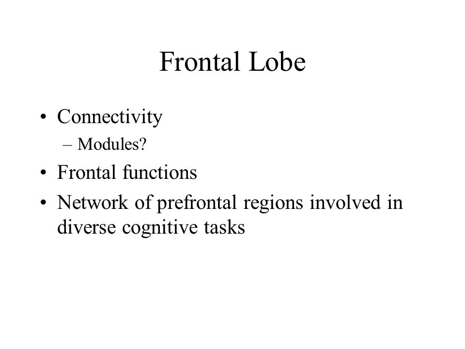 Frontal Lobe Connectivity –Modules.