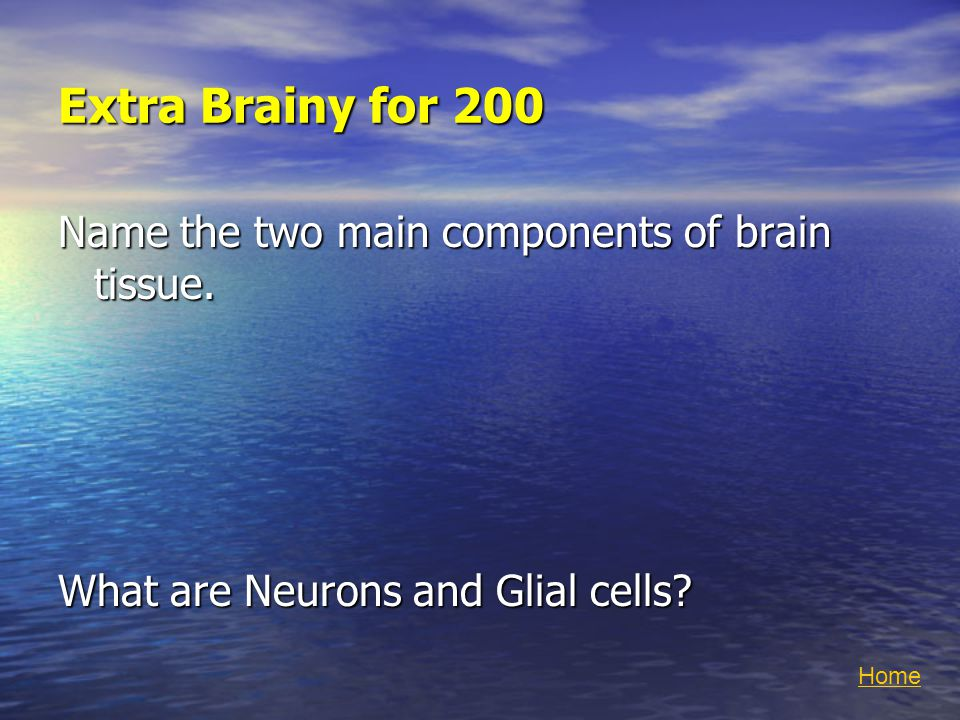 Extra Brainy for 200 Name the two main components of brain tissue.