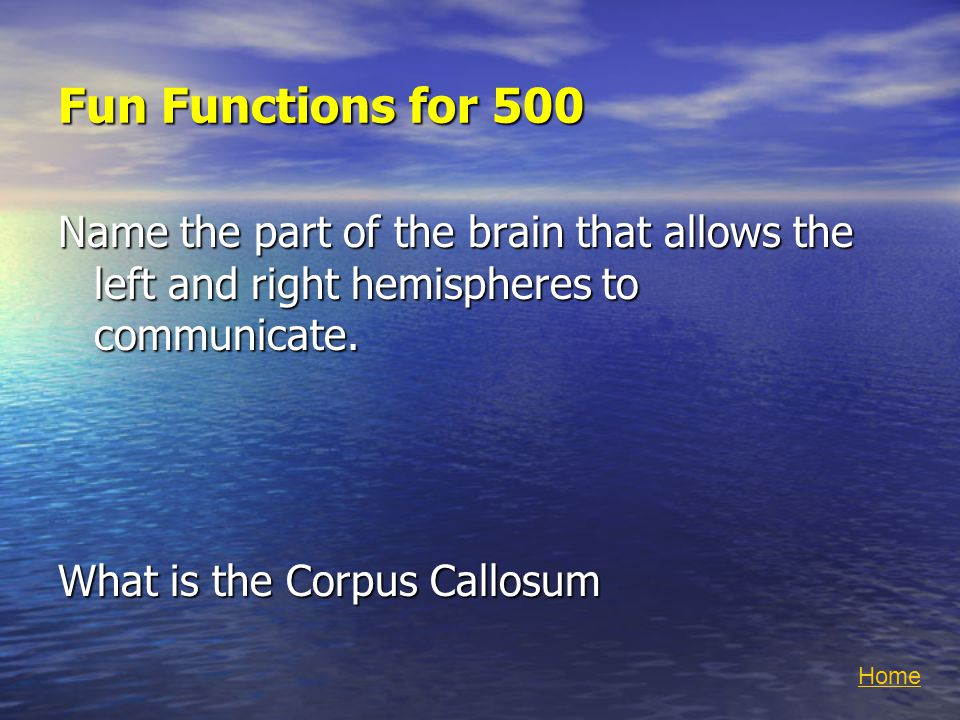 Fun Functions for 500 Name the part of the brain that allows the left and right hemispheres to communicate.