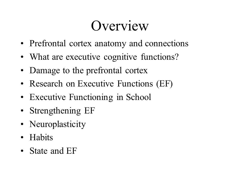 Overview Prefrontal cortex anatomy and connections What are executive cognitive functions? Damage to the prefrontal cortex Research on Executive Funct