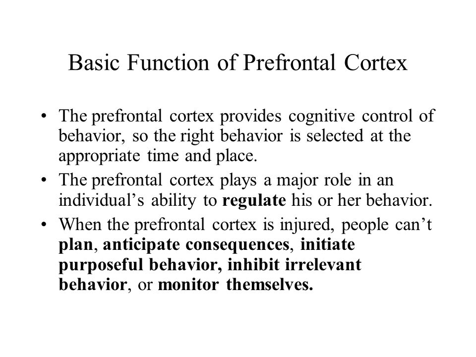 Basic Function of Prefrontal Cortex The prefrontal cortex provides cognitive control of behavior, so the right behavior is selected at the appropriate