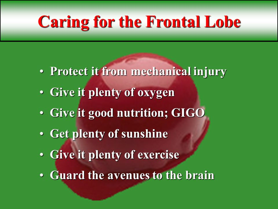 Caring for the Frontal Lobe Protect it from mechanical injuryProtect it from mechanical injury Give it plenty of oxygenGive it plenty of oxygen Give it good nutrition; GIGOGive it good nutrition; GIGO Get plenty of sunshineGet plenty of sunshine Give it plenty of exerciseGive it plenty of exercise Guard the avenues to the brainGuard the avenues to the brain