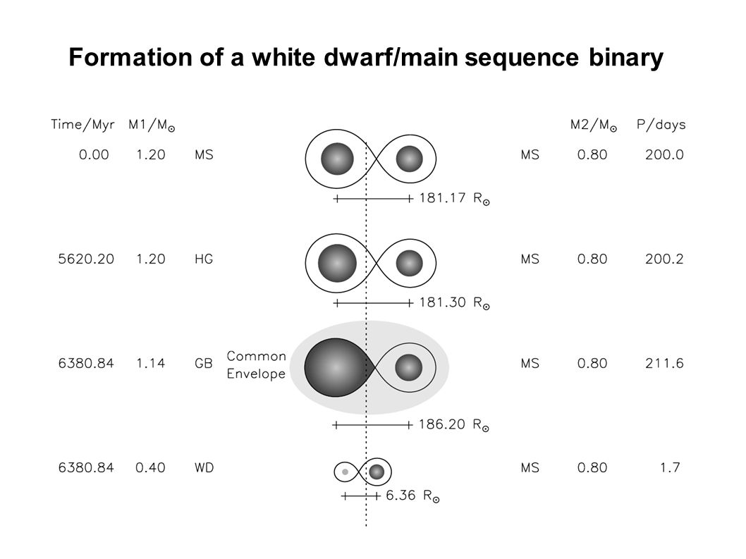 Formation of a white dwarf/main sequence binary