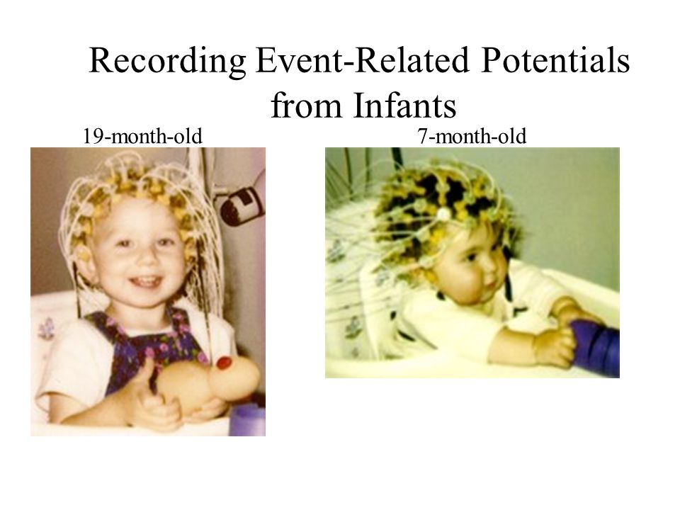 Recording Event-Related Potentials from Infants 19-month-old7-month-old