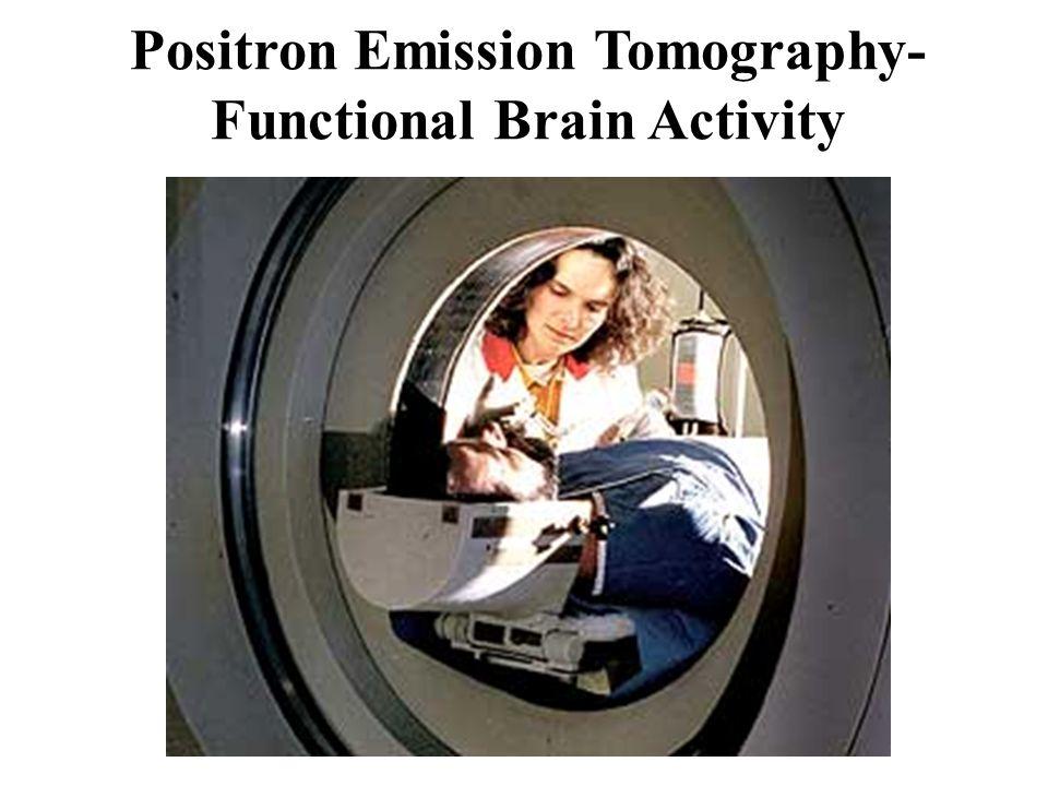 Positron Emission Tomography- Functional Brain Activity