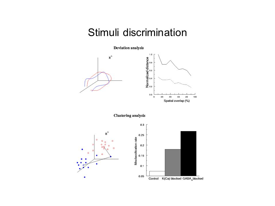 Stimuli discrimination