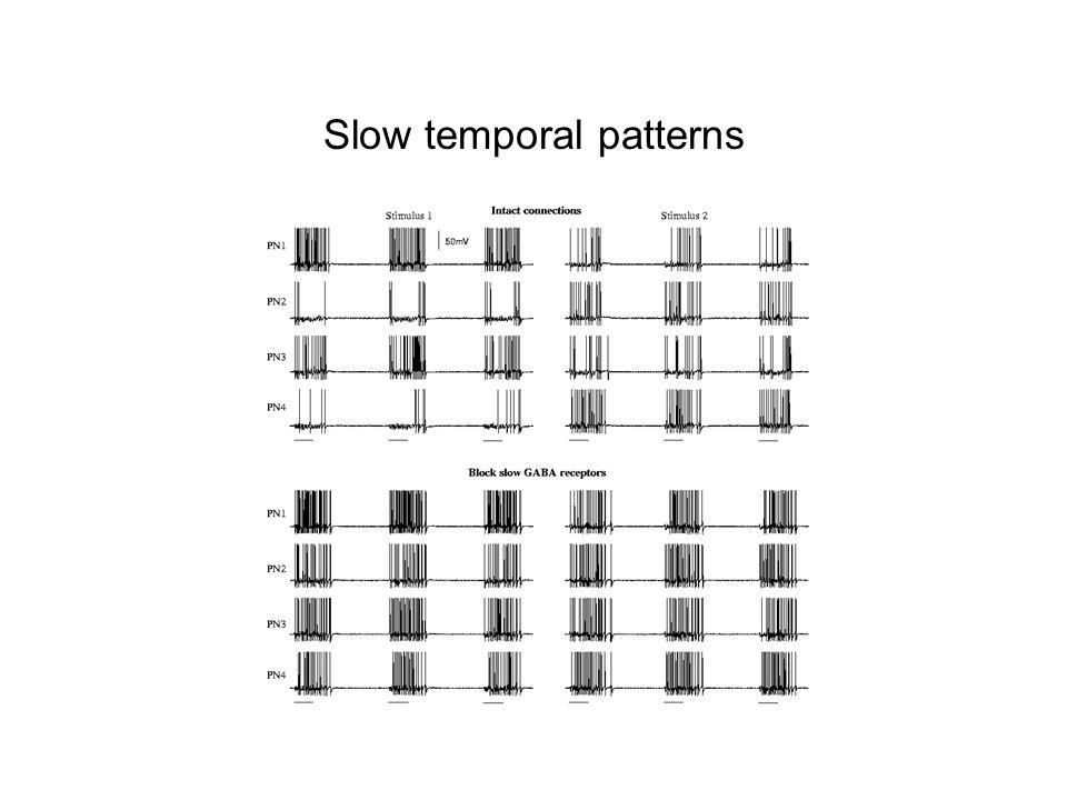 Slow temporal patterns