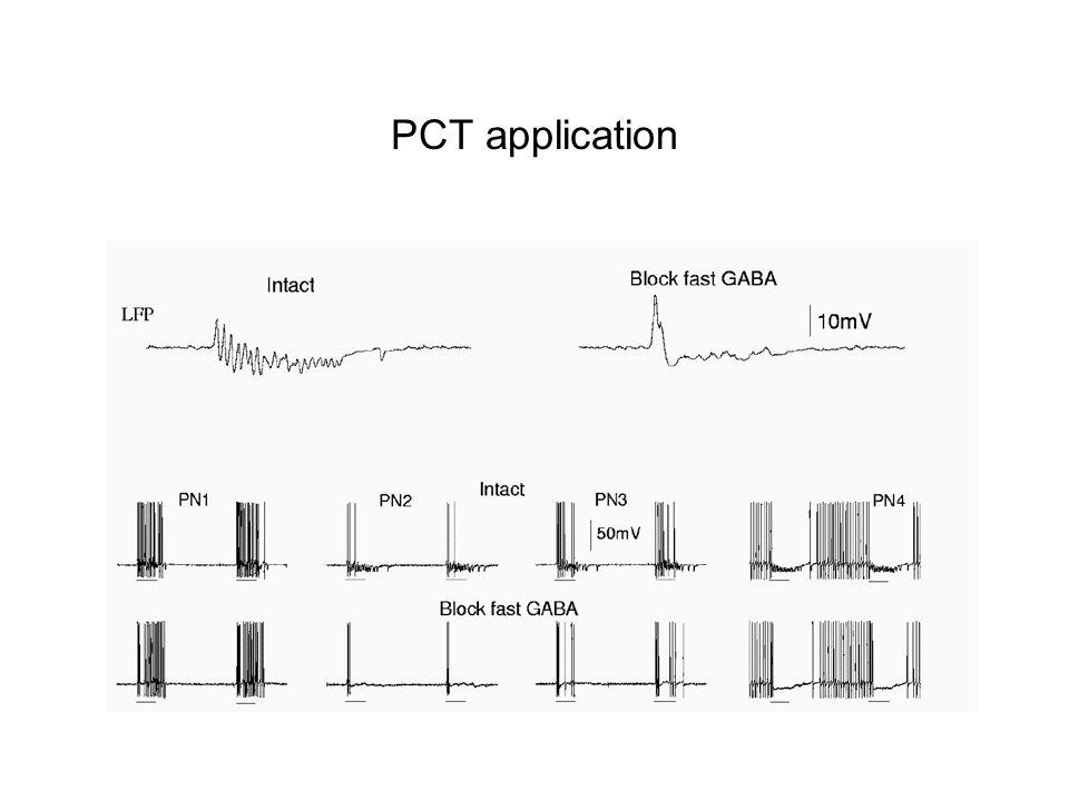 PCT application