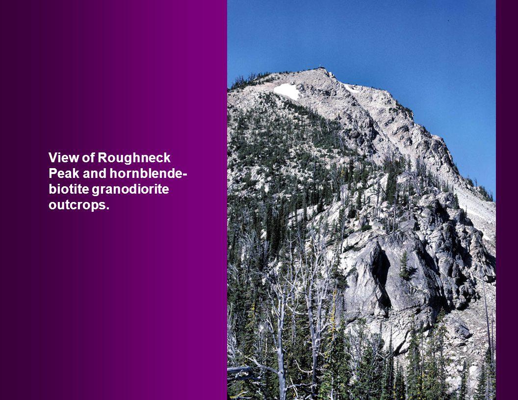 View of Roughneck Peak and hornblende- biotite granodiorite outcrops.