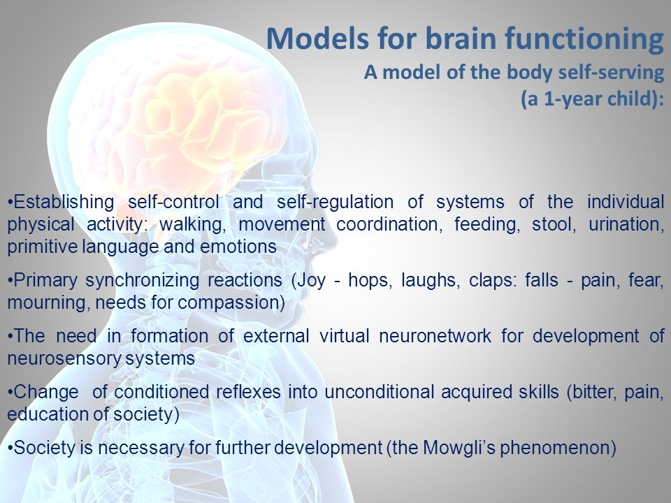 Models for brain functioning A model of the body self-serving (a 1-year child): Establishing self-control and self-regulation of systems of the indivi