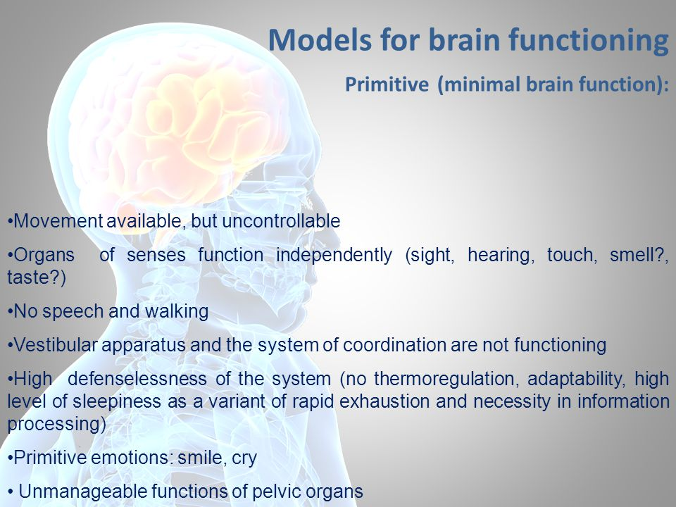 Models for brain functioning Primitive (minimal brain function): Movement available, but uncontrollable Organs of senses function independently (sight, hearing, touch, smell , taste ) No speech and walking Vestibular apparatus and the system of coordination are not functioning High defenselessness of the system (no thermoregulation, adaptability, high level of sleepiness as a variant of rapid exhaustion and necessity in information processing) Primitive emotions: smile, cry Unmanageable functions of pelvic organs