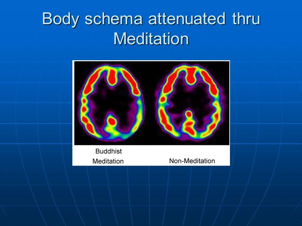 Body schema attenuated thru Meditation