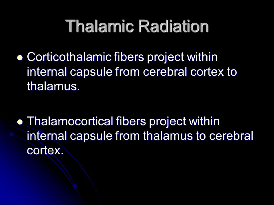 Thalamic Radiation Corticothalamic fibers project within internal capsule from cerebral cortex to thalamus. Corticothalamic fibers project within inte