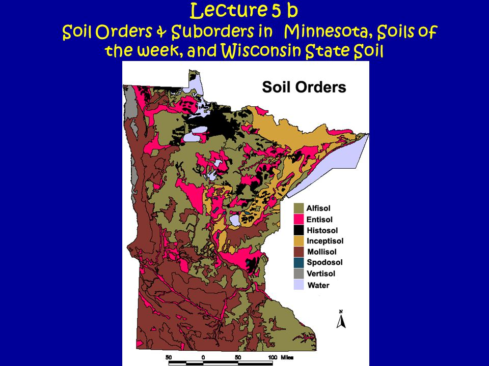 Ahmeek- Udept – a forested soil on Superior Lobe Till, on hill slopes and summits, well drained.