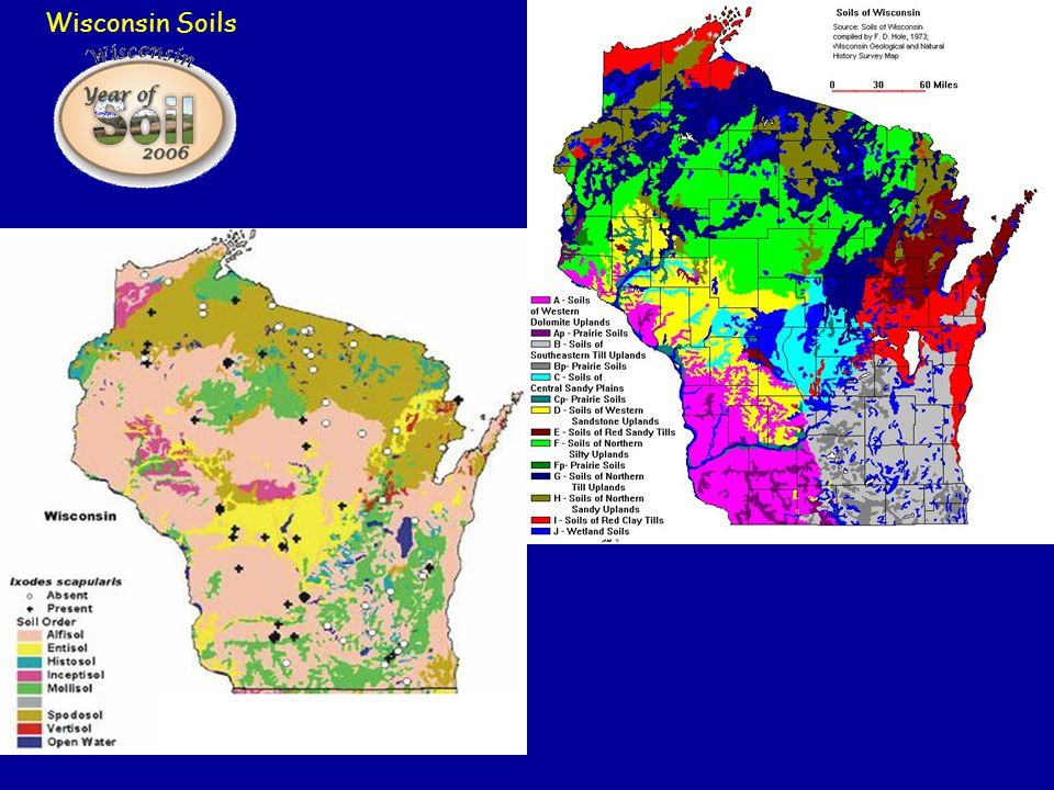 Wisconsin Soils