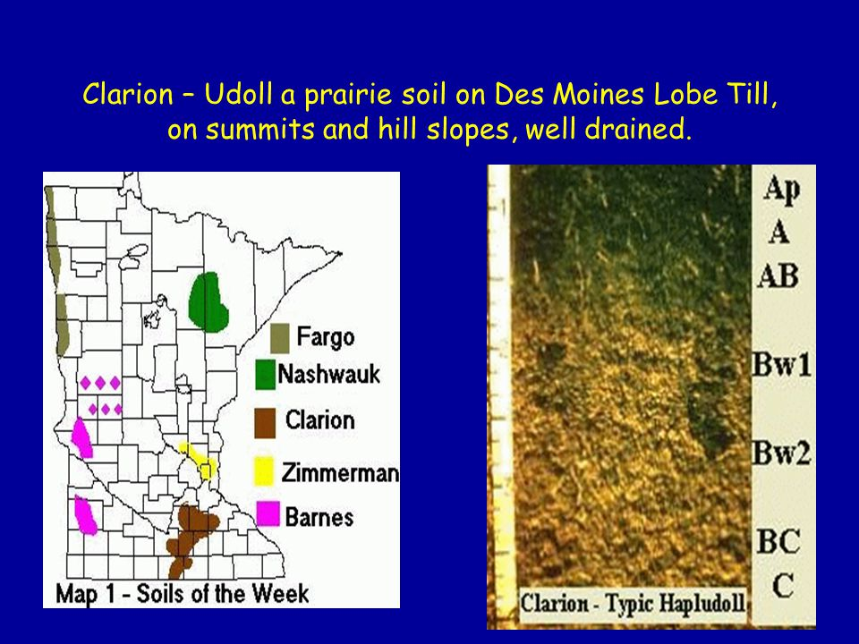 State Soil of Wisconsin - Antigo Antigo soils are formed in silty material underlain by sand and gravel on glacial outwash plains.