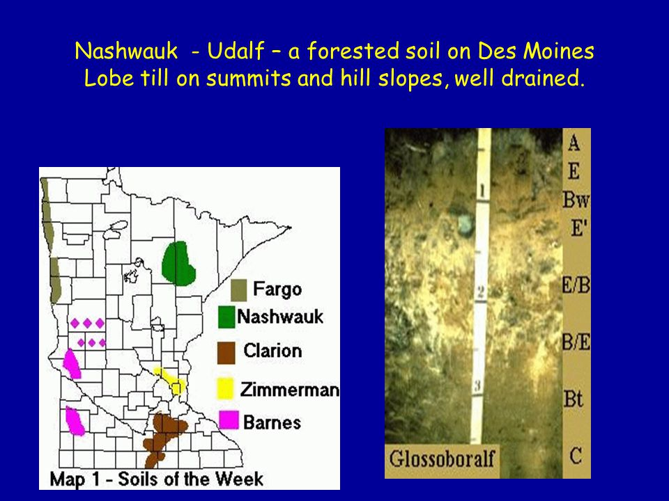 Nashwauk - Udalf – a forested soil on Des Moines Lobe till on summits and hill slopes, well drained.