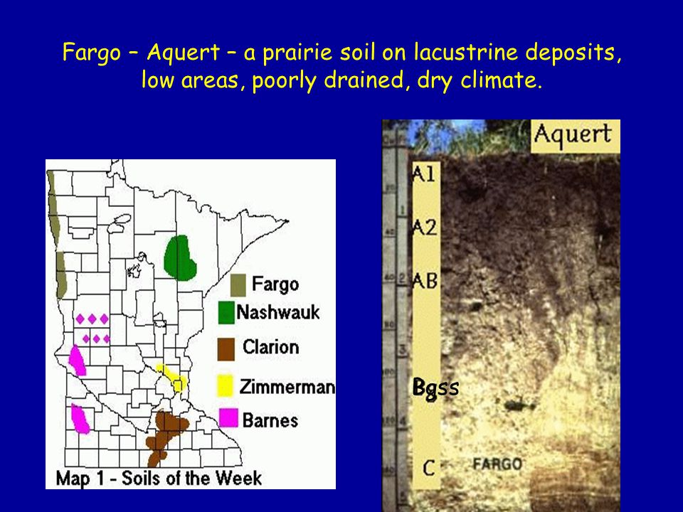 Fargo – Aquert – a prairie soil on lacustrine deposits, low areas, poorly drained, dry climate. Bgss