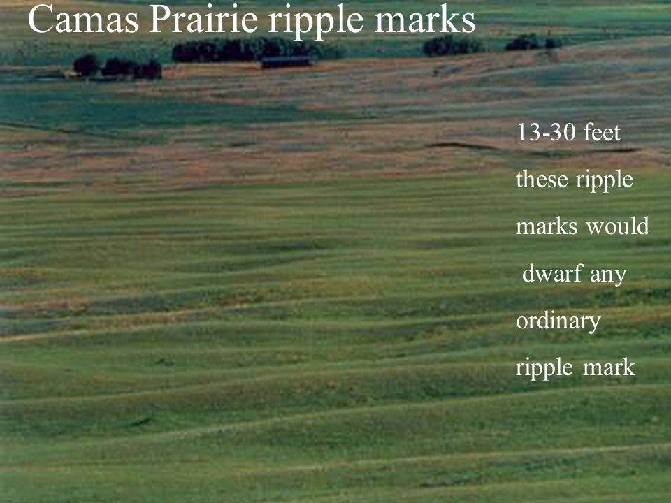 13-30 feet these ripple marks would dwarf any ordinary ripple mark Camas Prairie ripple marks