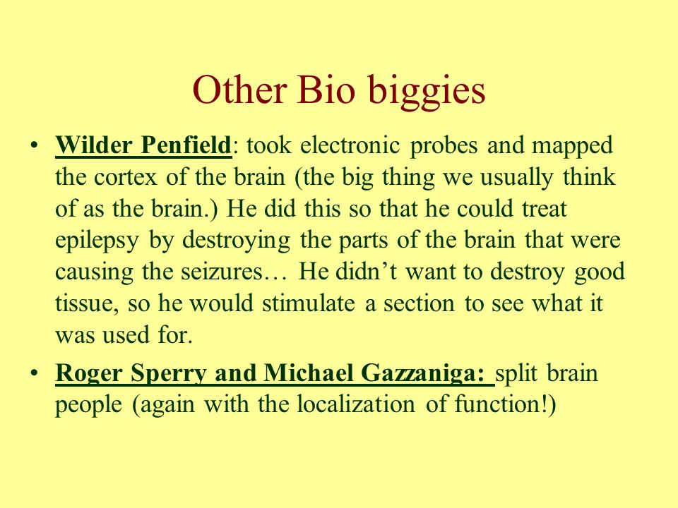Other Bio biggies Wilder Penfield: took electronic probes and mapped the cortex of the brain (the big thing we usually think of as the brain.) He did this so that he could treat epilepsy by destroying the parts of the brain that were causing the seizures… He didn't want to destroy good tissue, so he would stimulate a section to see what it was used for.