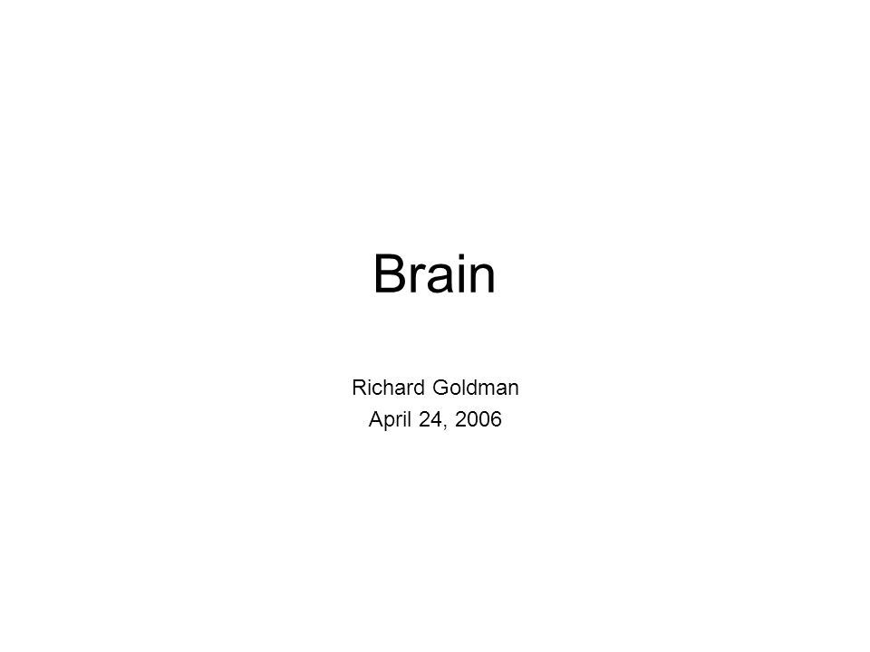 Brain Richard Goldman April 24, 2006