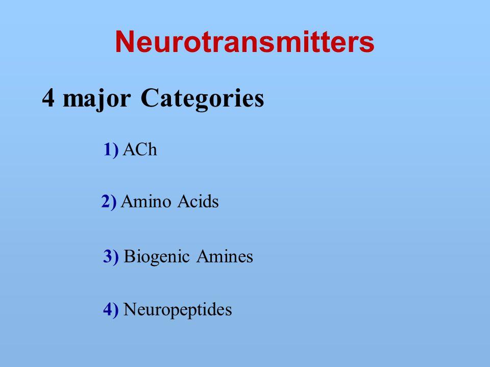 Neurotransmitters 4 major Categories 4) Neuropeptides 1) ACh 2) Amino Acids 3) Biogenic Amines