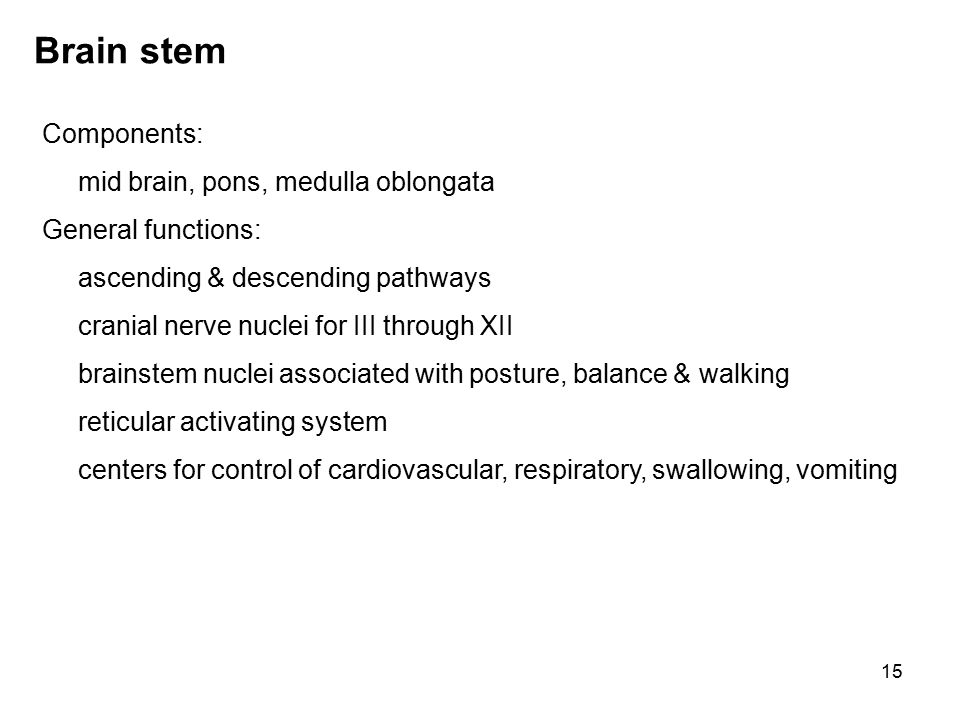 15 Brain stem Components: mid brain, pons, medulla oblongata General functions: ascending & descending pathways cranial nerve nuclei for III through XII brainstem nuclei associated with posture, balance & walking reticular activating system centers for control of cardiovascular, respiratory, swallowing, vomiting