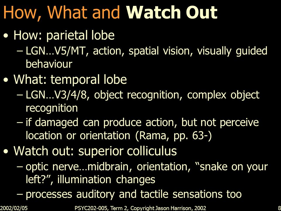 2002/02/05PSYC202-005, Term 2, Copyright Jason Harrison, 20028 How, What and Watch Out How: parietal lobe –LGN…V5/MT, action, spatial vision, visually guided behaviour What: temporal lobe –LGN…V3/4/8, object recognition, complex object recognition –if damaged can produce action, but not perceive location or orientation (Rama, pp.