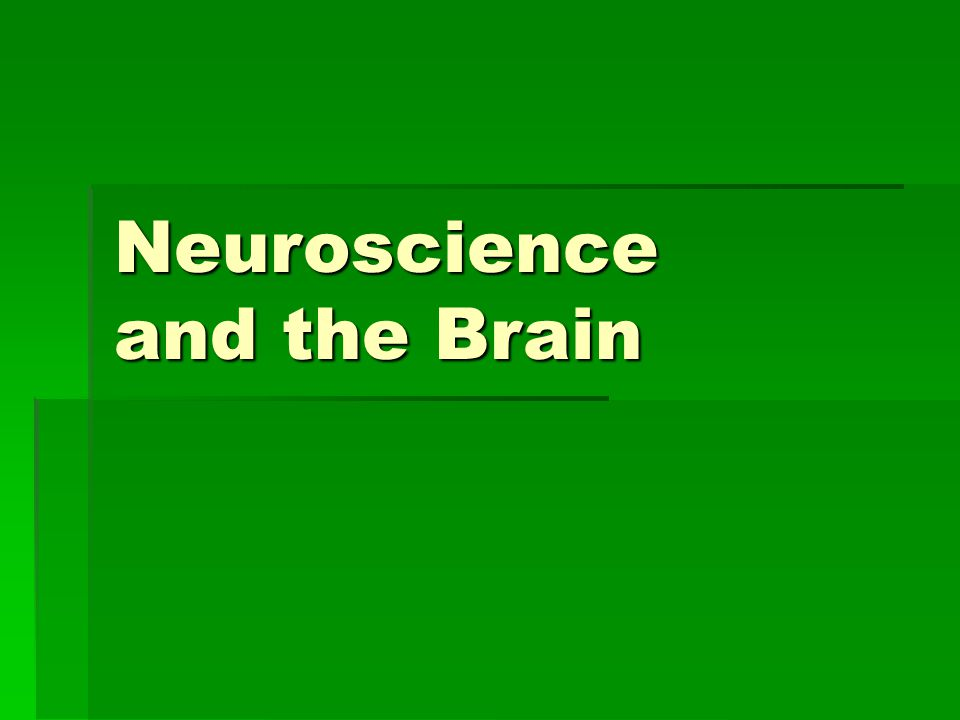 Neuroscience and the Brain