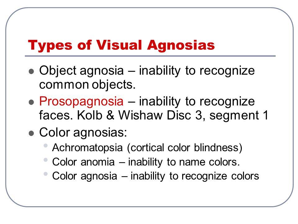Types of Visual Agnosias Object agnosia – inability to recognize common objects. Prosopagnosia – inability to recognize faces. Kolb & Wishaw Disc 3, s