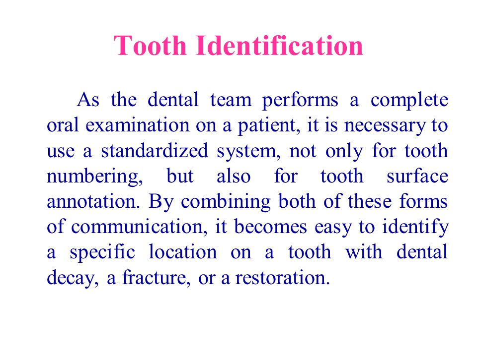In a dental office the correct identification of teeth is important for treatment and record keeping.