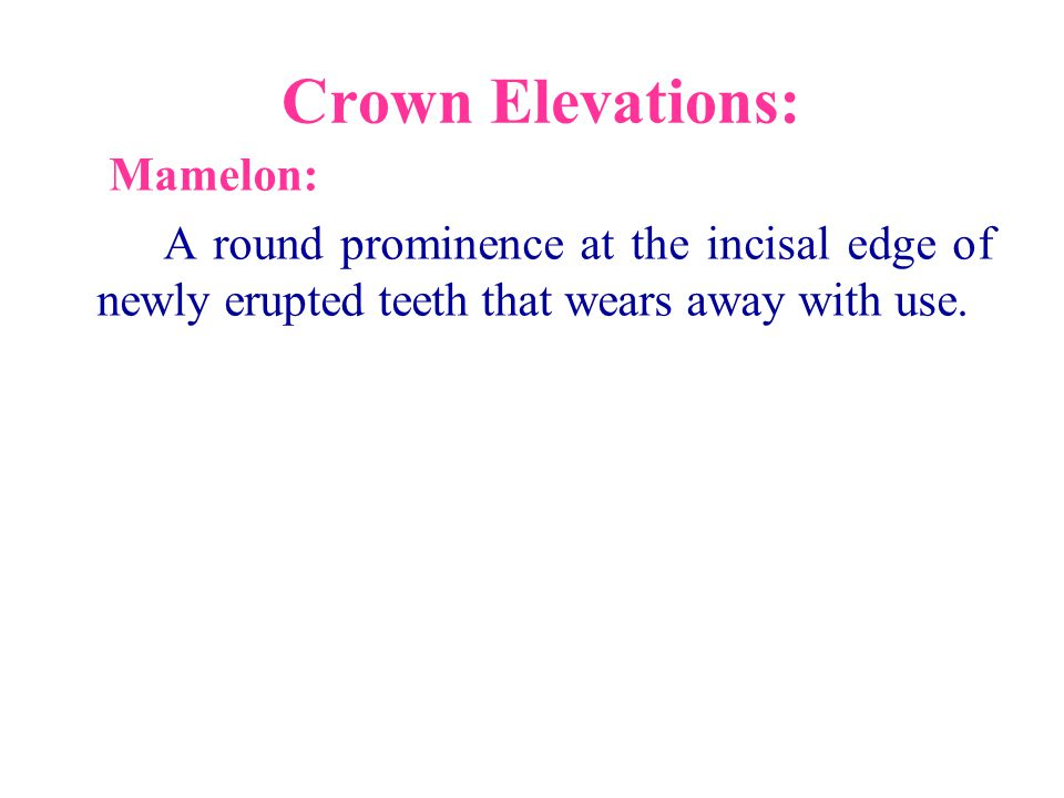 Crown Elevations: Mamelon: A round prominence at the incisal edge of newly erupted teeth that wears away with use.
