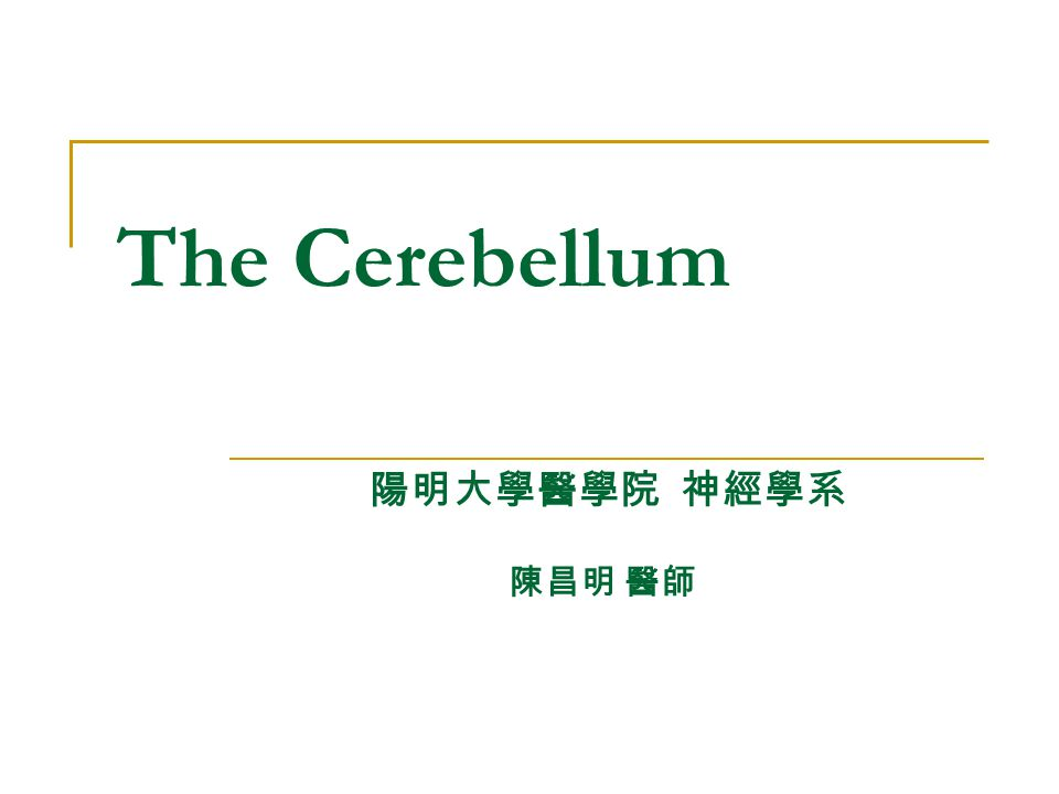 The Cerebellum 陽明大學醫學院 神經學系 陳昌明 醫師
