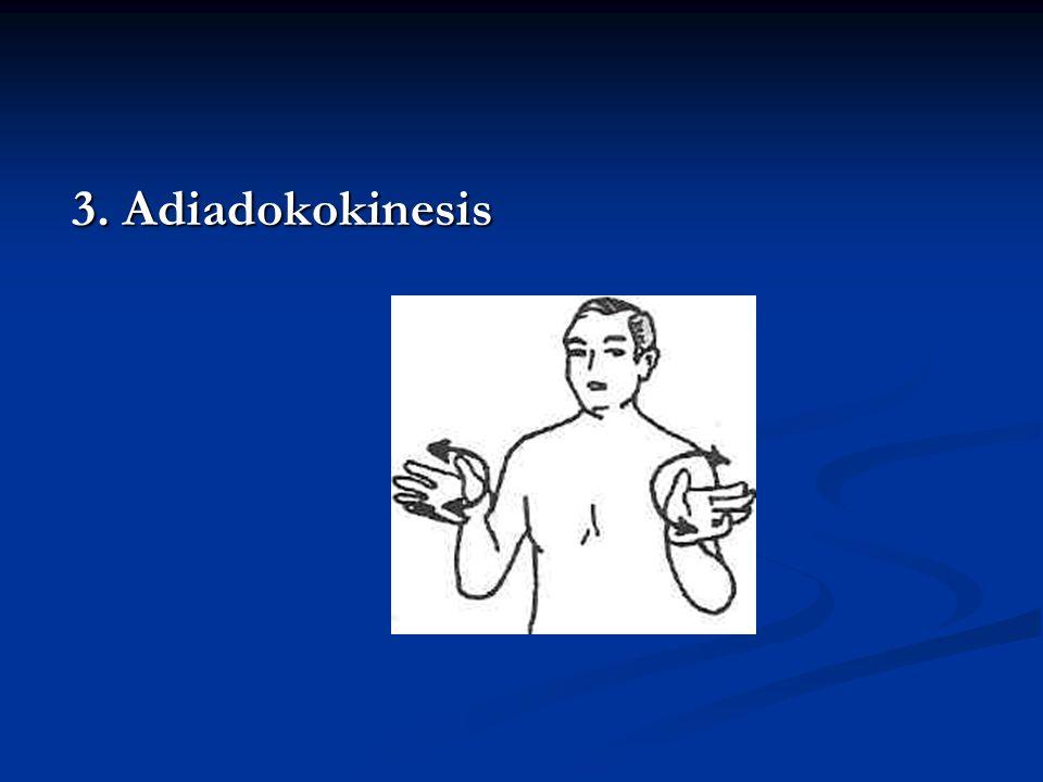 3. Adiadokokinesis