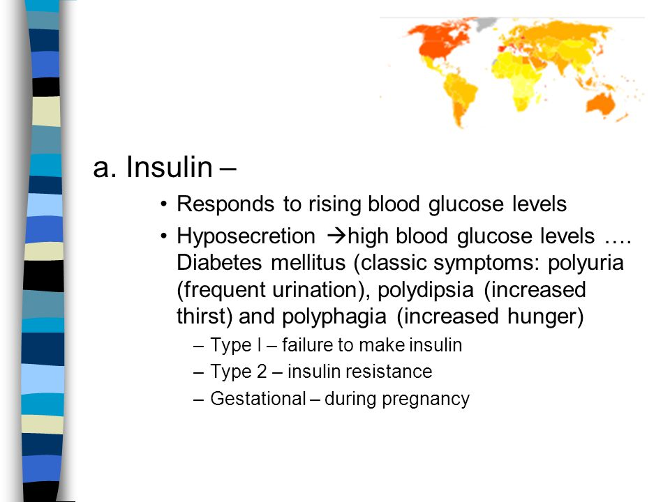 a.Insulin – Responds to rising blood glucose levels Hyposecretion  high blood glucose levels ….