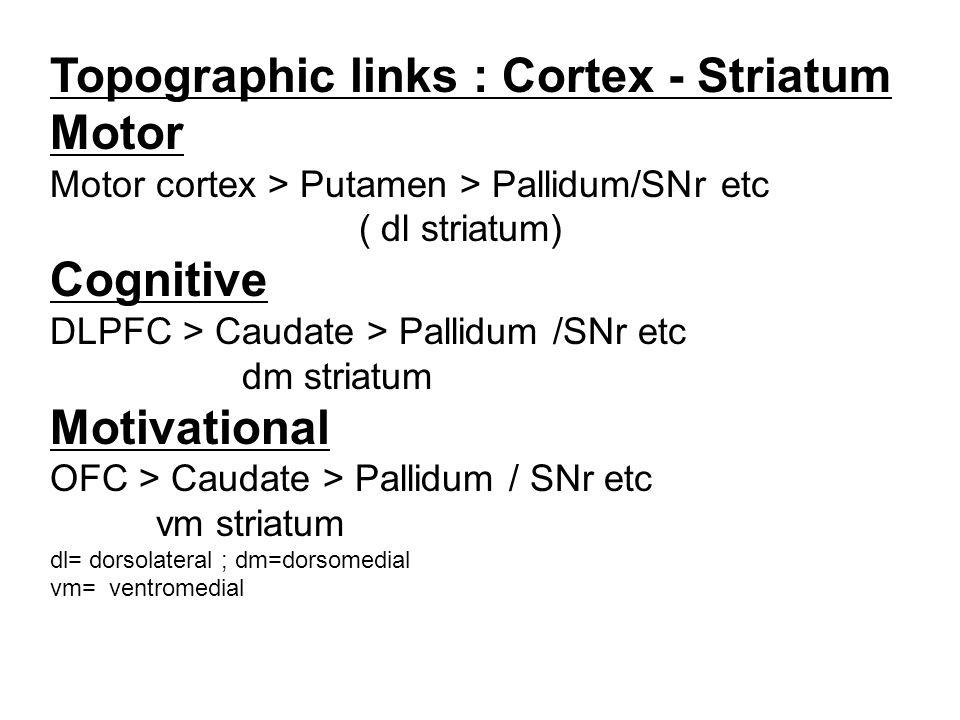 Topographic links : Cortex - Striatum Motor Motor cortex > Putamen > Pallidum/SNr etc ( dl striatum) Cognitive DLPFC > Caudate > Pallidum /SNr etc dm striatum Motivational OFC > Caudate > Pallidum / SNr etc vm striatum dl= dorsolateral ; dm=dorsomedial vm= ventromedial