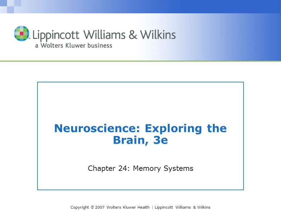 Copyright © 2007 Wolters Kluwer Health | Lippincott Williams & Wilkins Neuroscience: Exploring the Brain, 3e Chapter 24: Memory Systems