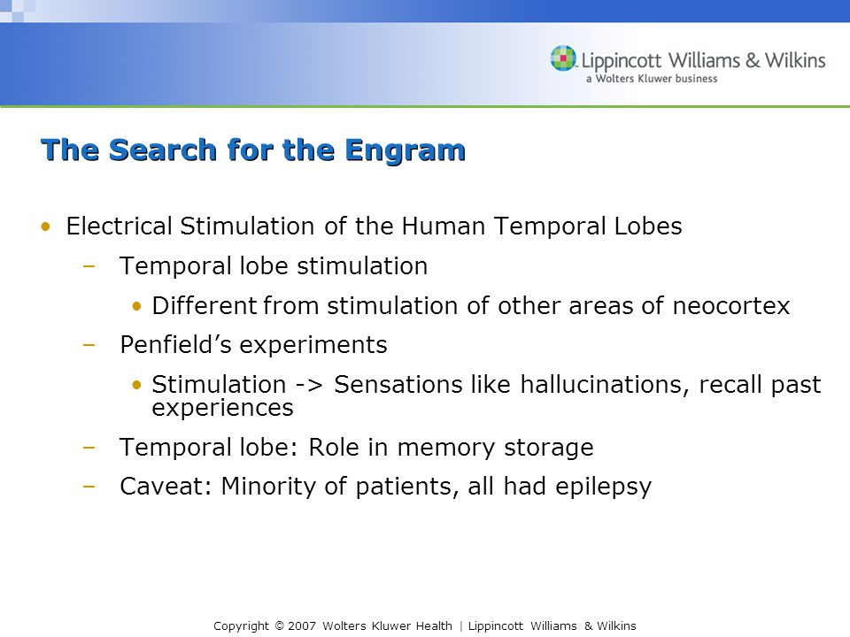 Copyright © 2007 Wolters Kluwer Health | Lippincott Williams & Wilkins The Search for the Engram Electrical Stimulation of the Human Temporal Lobes –Temporal lobe stimulation Different from stimulation of other areas of neocortex –Penfield's experiments Stimulation -> Sensations like hallucinations, recall past experiences –Temporal lobe: Role in memory storage –Caveat: Minority of patients, all had epilepsy